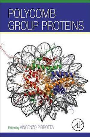 Bog, hardback Polycomb Group Proteins af Vincenzo Pirrotta