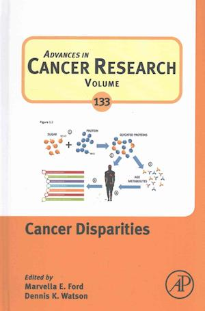 Bog, hardback Cancer Disparities