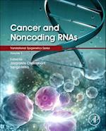Cancer and Noncoding RNAs (Translational Epigenetics)