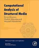 Computational Analysis of Structured Media (Mathematical Analysis and its Applications)
