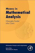 Means in Mathematical Analysis (Mathematical Analysis and its Applications)