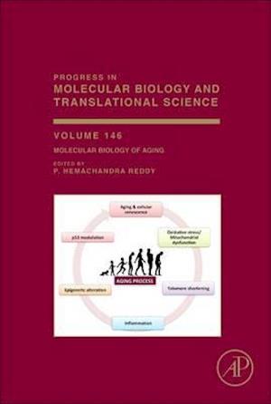 Bog, hardback Molecular Biology of Aging af P. Hemachandra Reddy