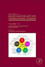 Approaches to Understanding Breast Cancer (Progress in Molecular Biology and Translational Science)