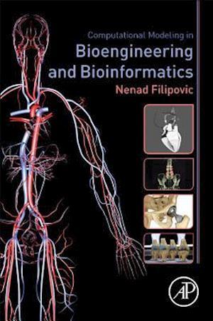 Computational Modeling in Bioengineering and Bioinformatics