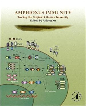 Amphioxus Immunity