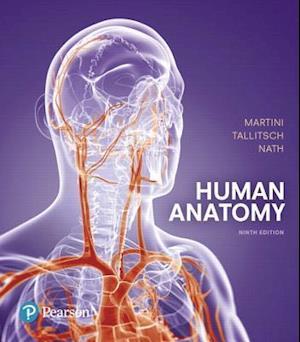 Bog, hardback Human Anatomy af Judi L. Nath, Robert B. Tallitsch, Frederic H. Martini