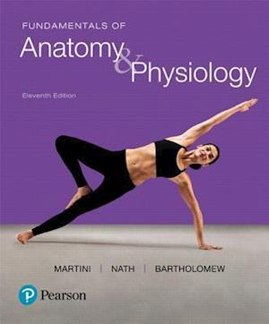 Bog, hardback Fundamentals of Anatomy & Physiology af Frederic H. Martini