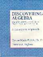 Discovering Algebra