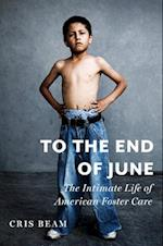 To the End of June (ALA Notable Books for Adults)