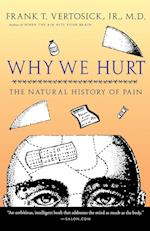Why We Hurt