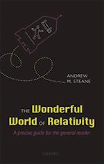 Wonderful World of Relativity: A precise guide for the general reader