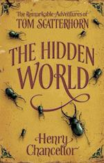 Hidden World  (The Remarkable Adventures of Tom Scatterhorn 2)