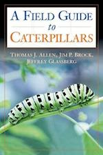 Caterpillars in the Field and Garden (Butterflies or Other Through Binoculars)