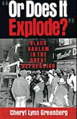 &quote;Or Does It Explode?&quote;: Black Harlem in the Great Depression