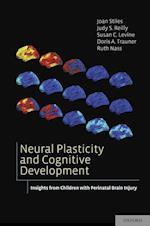 Neural Plasticity and Cognitive Development