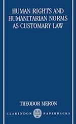 Human Rights and Humanitarian Norms as Customary Law (Clarendon Paperbacks)