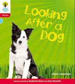 Oxford Reading Tree: Level 4: Floppy's Phonics Non-Fiction: Looking After a Dog (Oxford Reading Tree)