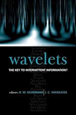 Wavelets: the Key to Intermittent Information?