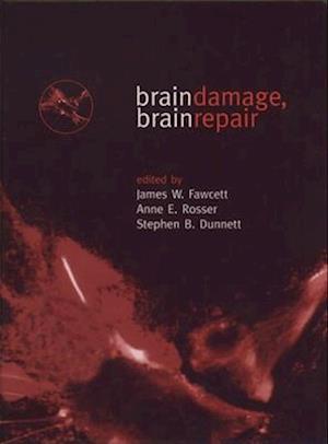 Brain Damage, Brain Repair