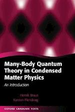 Many-body Quantum Theory in Condensed Matter Physics (Oxford Graduate Texts)