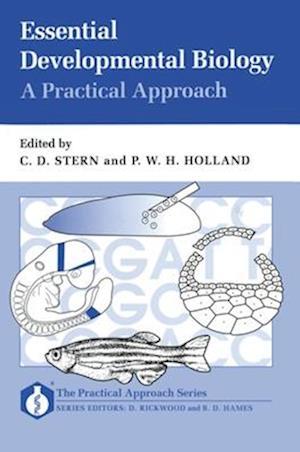 Bog, paperback Essential Developmental Biology af Claudio D Stern, Peter W H Holland