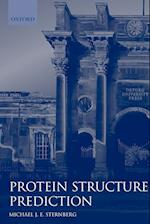 Protein Structure Prediction (Practical Approach Paperback, nr. 170)