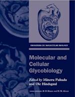 Molecular and Cellular Glycobiology (Frontiers in Molecular Biology, nr. 30)