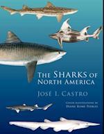 Sharks of North America