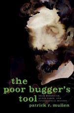 Poor Bugger's Tool: Irish Modernism, Queer Labor, and Postcolonial History