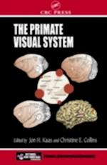 Primate Visual System (Frontiers in Neuroscience)