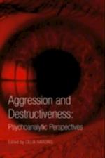 Aggression and Destructiveness