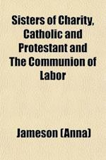 Sisters of Charity, Catholic and Protestant and the Communion of Labor