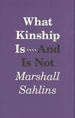What Kinship is - and is Not