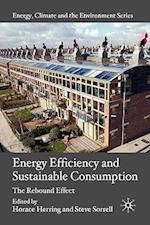 Energy Efficiency and Sustainable Consumption (Energy, Climate and the Environment)
