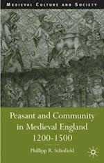 Peasant and Community in Medieval England, 1200-1500 (Medieval Culture and Society)