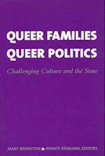 Queer Families, Queer Politics (Between Men--Between Women Lesbian and Gay Studies)