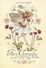 Fairy Chronicles (Flower Fairies)
