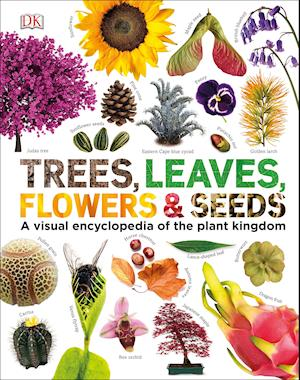 Our World in Pictures: Trees, Leaves, Flowers & Seeds