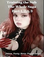 Training the Sub - The Whole Saga Part 1, 2 & 3 (Bdsm, Party, Sexy, Punishment)
