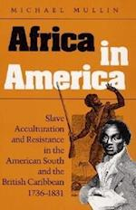 Africa in America (Blacks in the New World)