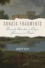 Sonata Fragments (Musical Meaning and Interpretation)