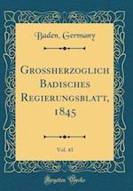 Groherzoglich Badisches Regierungsblatt, 1845, Vol. 43 (Classic Reprint) af Baden Germany