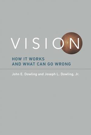 Vision af John E. Dowling, Joseph L. Dowling