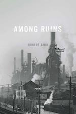 Among Ruins (ND Ernest Sandeen Prize Poetry)