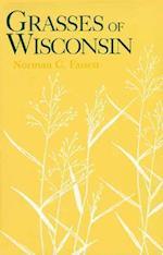 Grasses of Wisconsin
