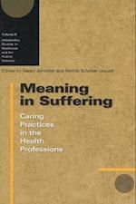 Meaning in Suffering (Interpretive Studies in Healthcare and the Human Sciences, nr. 6)