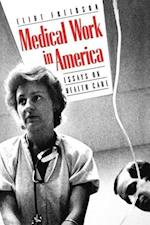 Medical Work in America: Essays on Health Care