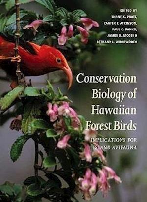 Conservation Biology of Hawaiian Forest Birds