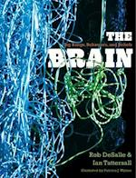 The Brain af Rob DeSalle, Patricia J Wynne, Ian Tattersall