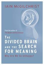 Divided Brain and the Search for Meaning
